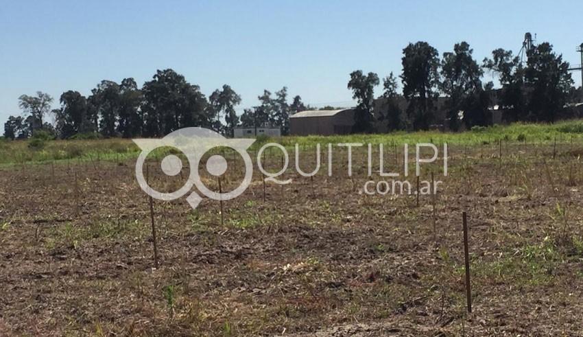 Para despedir el año, la Escuela Agropecuaria puso en marcha ambicioso proyecto 9