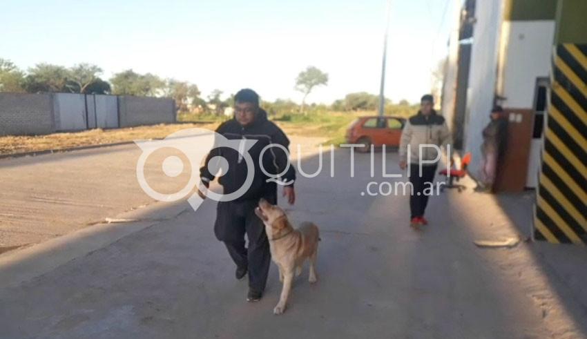 Tupak, el perro bombero se sigue preparando 3