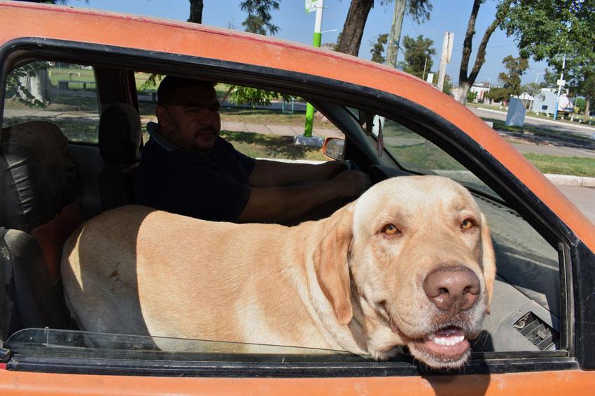 Tupak, el perro bombero se sigue preparando 5
